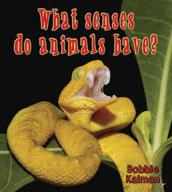 What senses do animals have?
