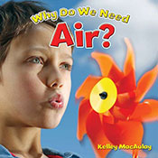 Why Do We Need Air? (eBook)