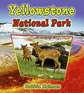 Yellowstone National Park (eBook)