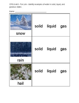 Alternate Assessment - Solid, Liquid, or Gas?