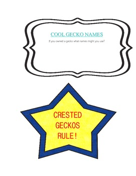 CRESTED GECKO LAPBOOK