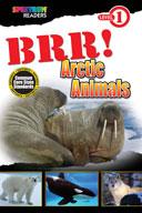 Brr! Arctic Animals