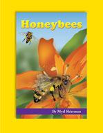 Honeybees by Mark Twain Media