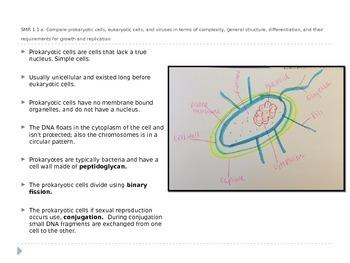 CSET Subtest III: 120 Biology
