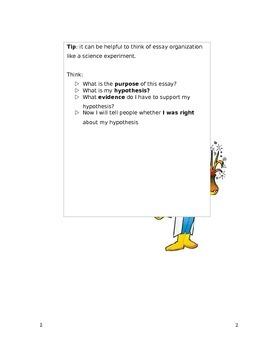 CSI Essay Writing Skills