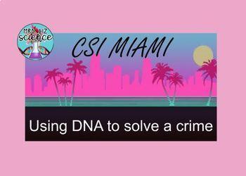 Protein Synthesis Activity CSI MIAMI DNA to RNA to Protein