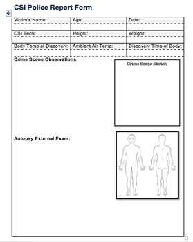 CSI Report Form Template