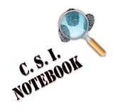 CSI Unit Activity File