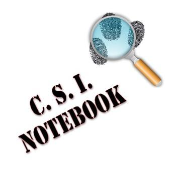 CSI Unit Activity File