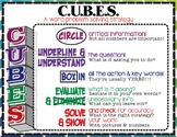 CUBES: A Word Problem Solving Strategy