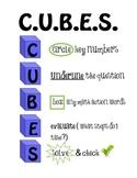 C.U.B.E.S. Problem Solving Strategy