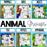 ANIMAL GROUPS BUNDLE FOR KINDERGARTEN AND FIRST GRADE