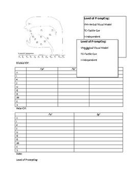 CV, CVC apraxia of speech data sheet
