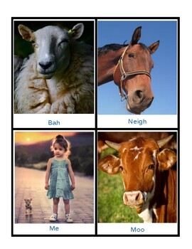 Part I: CV Syllables - Real Pictures