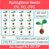Apraxia Gardening Activitity! CV, VC, CVC Words & Vocabulary