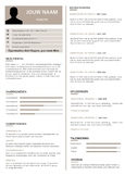 CV template teacher/student