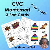 CVC Montessori 3 Part Cards - English - Color and BW - Pink Level