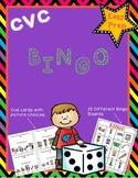 CVC Bingo (word family practice)