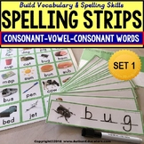 CVC Consonant Vowel Consonant Vocabulary Spelling Strips AUTISM RESOURCE