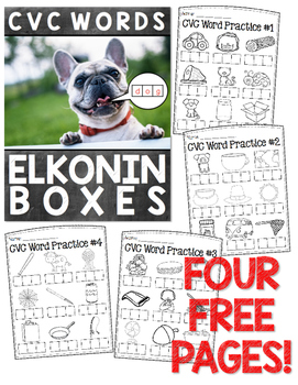 CVC Elkonin Box FREEBIE!