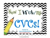 CVC Flash Cards - Reading