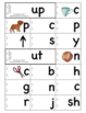 CVC Rhyming Word Family Flip Books in Color and BW