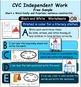 CVC Handwriting Practice FREEBIE: Short 'a' and Preprimer