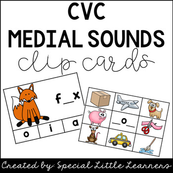 CVC Medial Sounds Clip Cards