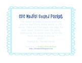 CVC Medial Sounds Packet