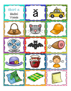 CVC Medial Vowel Pictures (for picture sorts)