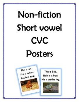 CVC Non-Fiction Story Poster