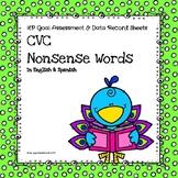 CVC Nonsense Words Assessment