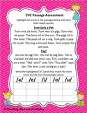 CVC Passage Assessment