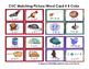 CVC Picture Word Matching Cards in Color and BW - Lo Prep