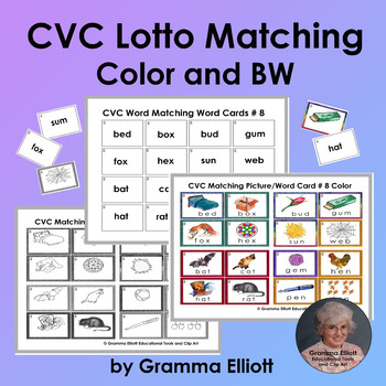 CVC Picture Word Matching in Color