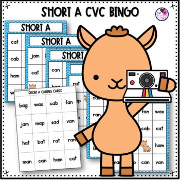 CVC Short a Bingo