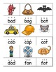 CVC Word Cards, Sort and Matching