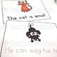 CVC Work Books for Kindergarten