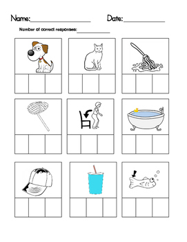 CVC Word Boxes-Mixed Vowels Review