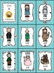 CVC Word Families EXPANSION PACK for The Land of Oz Sight