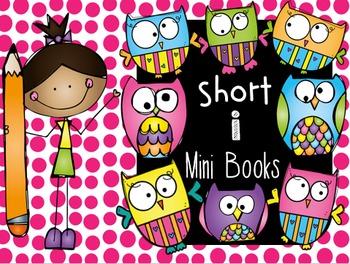 CVC Word Families Mini Books (Short i)