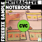 CVC Word Family Interactive Notebook Freebie