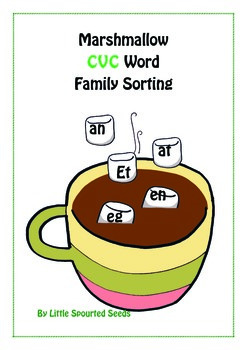 CVC Word Family Matching Game