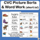 CVC Word Family Picture Sorts and Word Work for the Short /a/ Word Families