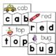 CVC Word Puzzles