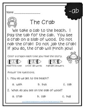 CVC Word Family Reading Comprehension FREE SAMPLE