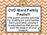 CVC & Word Family Words