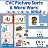 CVC Picture Sort & CVC Word Sort BUNDLE  | Distance Learning