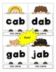 CVC Word Flash Cards - 212 Cards in Color and Black and White (Over 400 Total!)