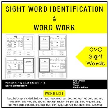 CVC Word Identification & Word Work Printables (Gen Ed., Autism & Special Ed.)